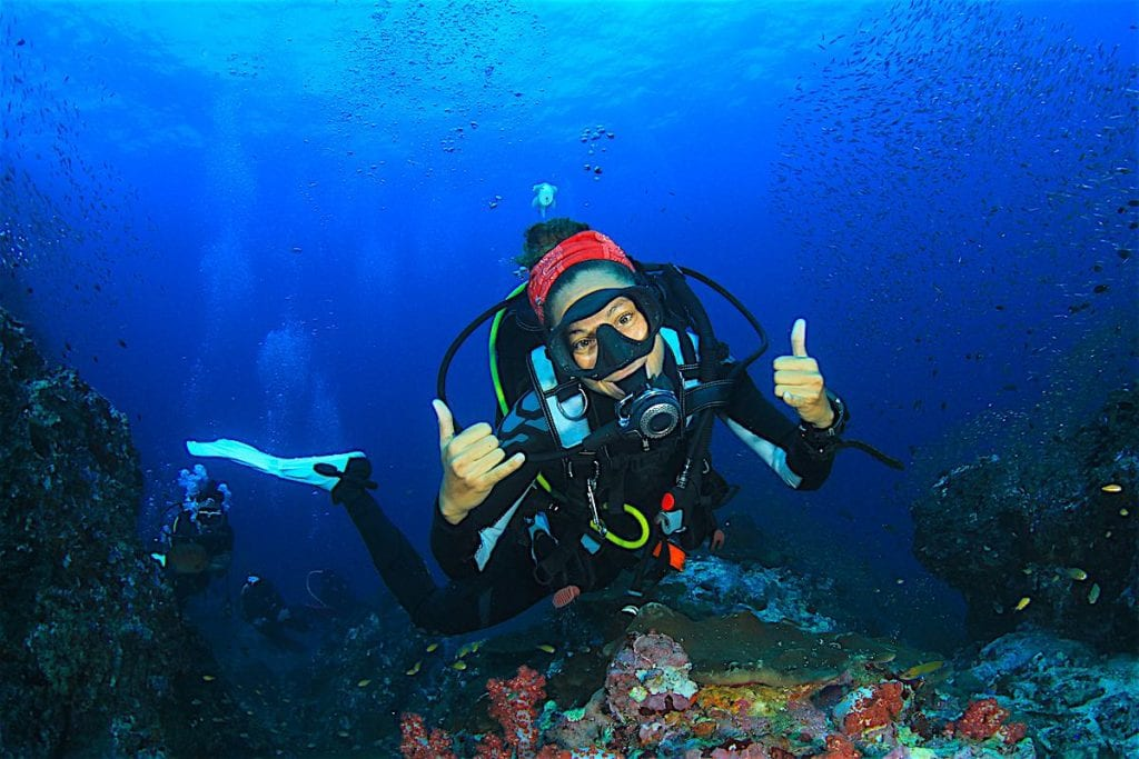 Best PADI Divemaster Courses in the World