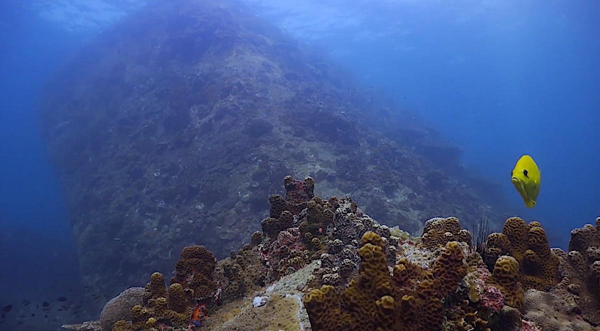 Best Dive Sites in Thailand