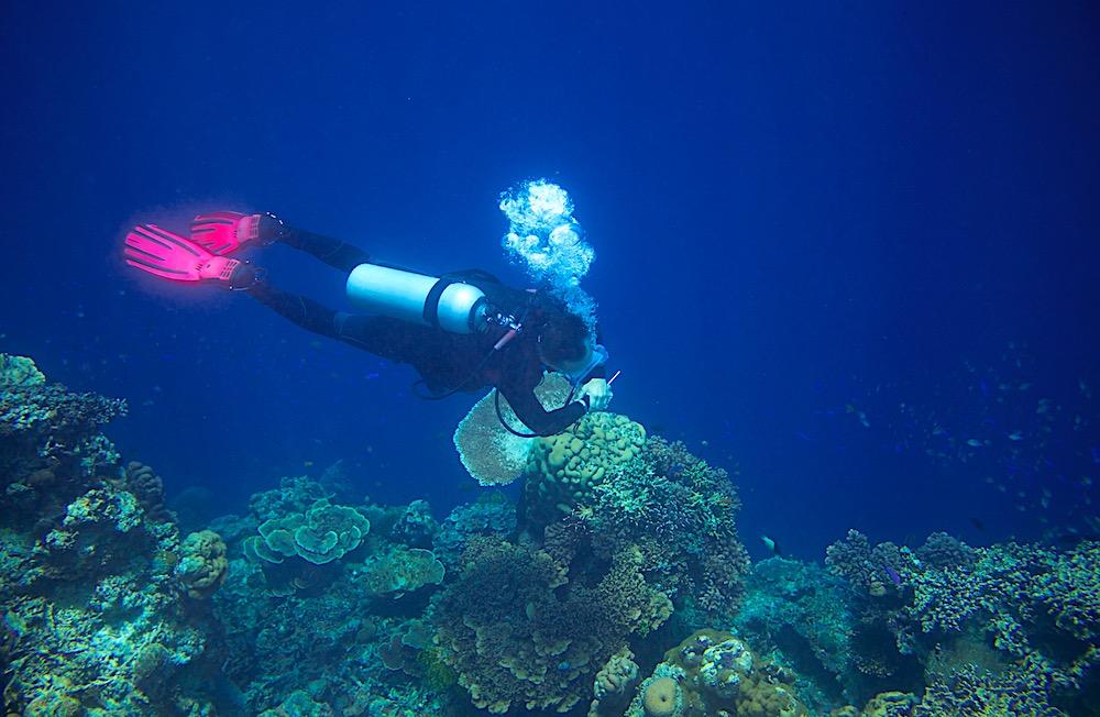 Koh Tao Deep Diver Specialty Course