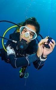 Divemaster Internships Koh Tao