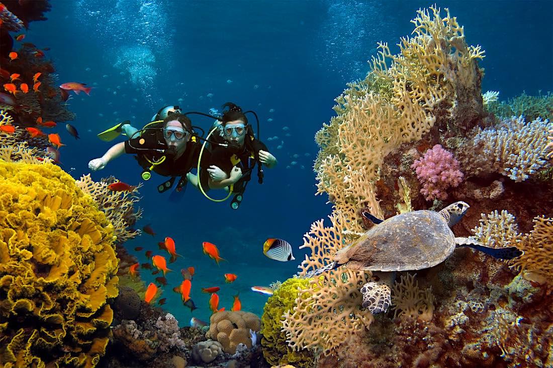 Koh Tao Discover Scuba Diving Program