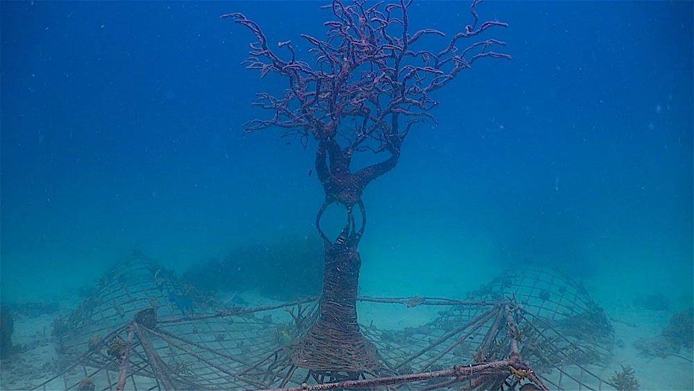 Aow Leuk Dive Site - Artificial Dive Site Area
