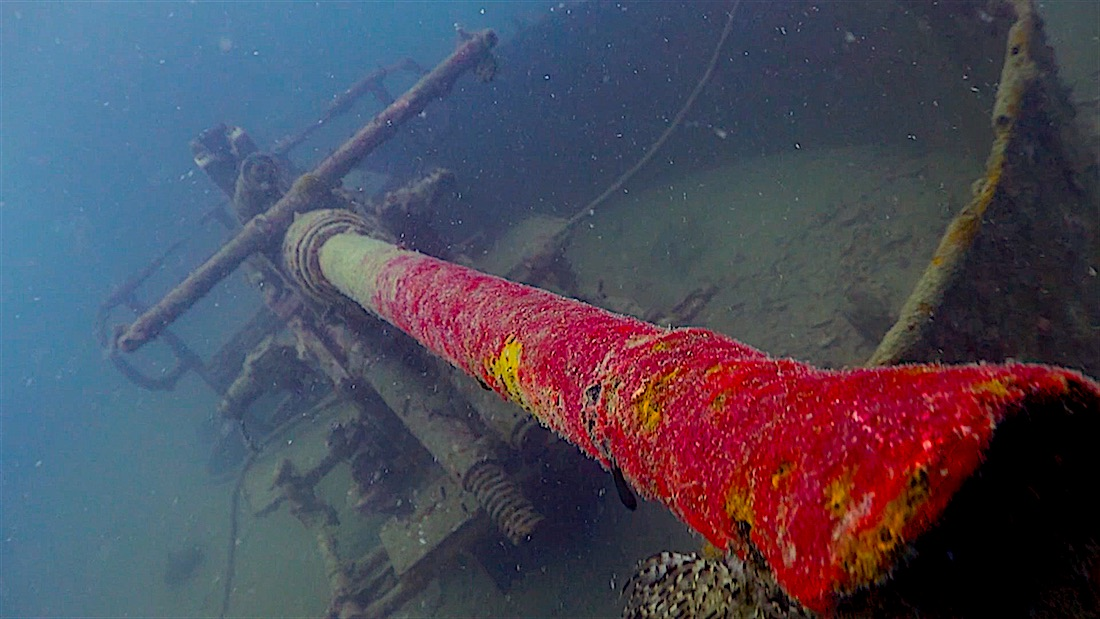 HTMS Sattakut Wreck - Cannon