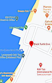 Google map location for Black Turtle Dive Koh Tao