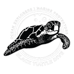 black turtle dive koh tao logo