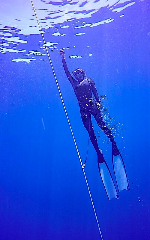Best PADI Freediving Courses Koh Tao